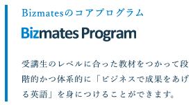 ビズメイツプログラム